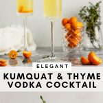 Pinterest graphic for kumquat cocktail