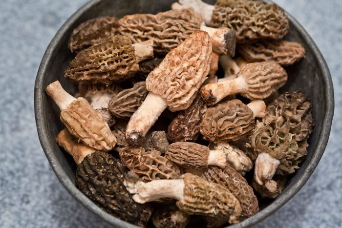 overhead image of morel mushrooms in a gray bowl set on a blue table