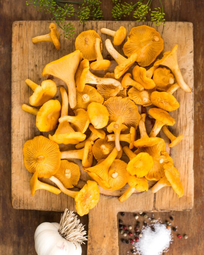 a pile of golden Chanterelle mushrooms on a square cutting board with herbs, garlic and salt arranged around them